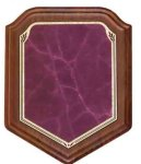 Shield Walnut Plaque with Burgundy Marble Plate Sales Awards