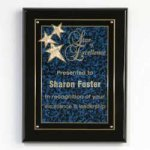 Constellation Plaque Sales Awards