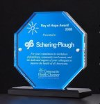 Octagon Series Acrylic Award Featuring a Blue Mirror Sales Awards
