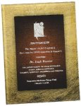 Gold & Burgundy Acrylic Art Plaque Award Sales Awards